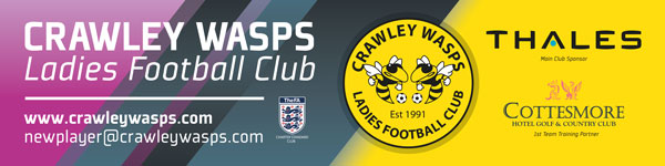 Advertising banner design for ladies football team